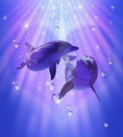 dolphinslemuria1