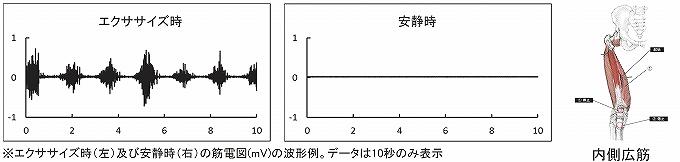 ss-vm_10